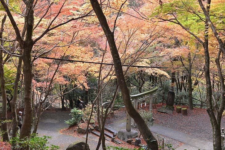 大矢田神社の舗装道