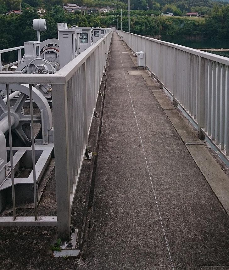 落合ダムの堤体道路