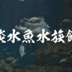 淡水魚専門の水族館アクアトト